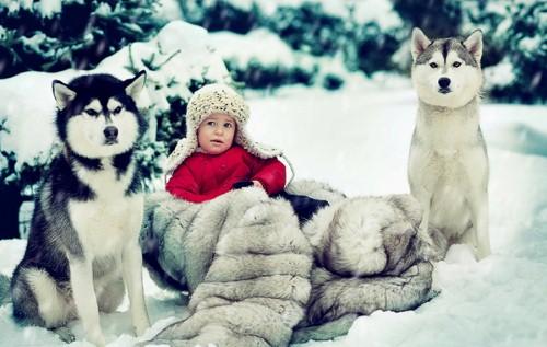 Những thiên thần tuyết đáng yêu không thể bỏ qua 14