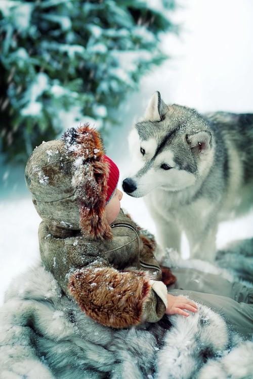 Những thiên thần tuyết đáng yêu không thể bỏ qua 2