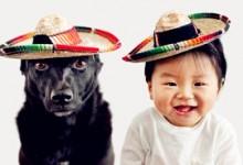 """Tình bạn """"tuyệt đẹp"""" giữa cậu bé và cún cưng"""